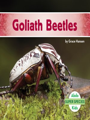 cover image of Goliath Beetles